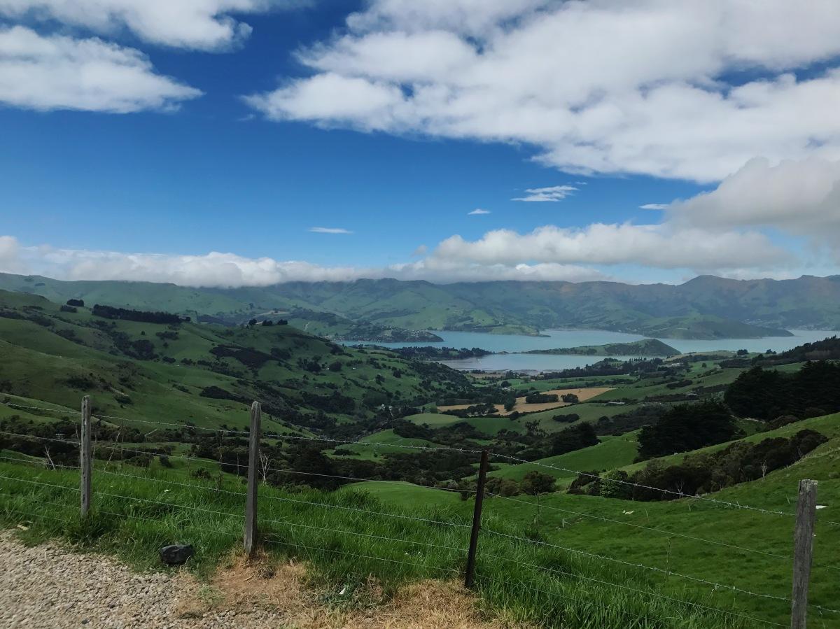 Best View Akaroa